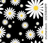 white daisies seamless vector... | Shutterstock .eps vector #1025084899