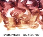 hair texture ombre curly... | Shutterstock . vector #1025100709