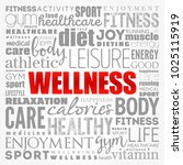 wellness word cloud collage ... | Shutterstock .eps vector #1025115919