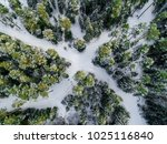 aerial view on forest roads... | Shutterstock . vector #1025116840