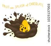 icon illustration logo for ripe ... | Shutterstock . vector #1025137003