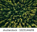 aerial top view of summer green ...   Shutterstock . vector #1025144698