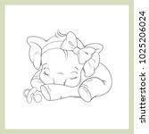 cute little newborn baby... | Shutterstock .eps vector #1025206024