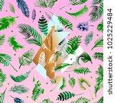 tropical pink illustrations... | Shutterstock . vector #1025229484