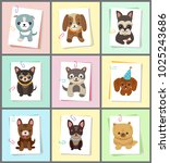 puppies and dogs poster set ... | Shutterstock .eps vector #1025243686