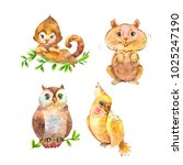 set of fluffy wild animals.... | Shutterstock . vector #1025247190