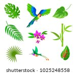 plam leaf and tropical plant... | Shutterstock .eps vector #1025248558