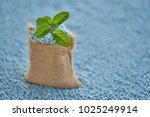mint leaves in gunny sack on... | Shutterstock . vector #1025249914