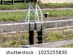 the white metal ladders that... | Shutterstock . vector #1025255830