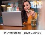 credit card data. gay... | Shutterstock . vector #1025260498