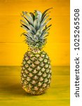 ripe pineapple on a yellow... | Shutterstock . vector #1025265508