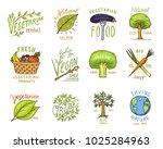 healthy organic food logos set... | Shutterstock .eps vector #1025284963