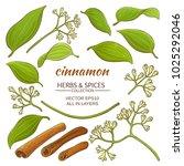 cinnamon elements set | Shutterstock .eps vector #1025292046