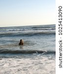 little girl playing in the waves | Shutterstock . vector #1025413090