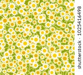 abstract yellow white flowers... | Shutterstock . vector #1025416498