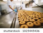 cookie factory  food industry.... | Shutterstock . vector #1025445436