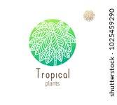 tropical plant logo. vector... | Shutterstock .eps vector #1025459290