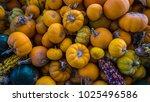 harvest themed background...   Shutterstock . vector #1025496586