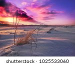 bright and colorful winter... | Shutterstock . vector #1025533060