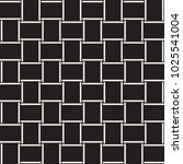 trendy monochrome twill weave... | Shutterstock .eps vector #1025541004