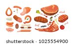 different types of meat... | Shutterstock . vector #1025554900