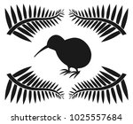 kiwi and ferns  symbols of new... | Shutterstock .eps vector #1025557684