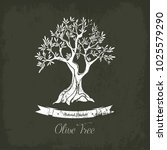 ancient greece olive oil tree... | Shutterstock .eps vector #1025579290