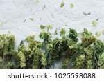macro bunch of green sage with... | Shutterstock . vector #1025598088
