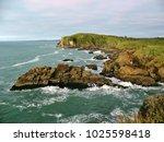 charleston cliffs  new zealand   Shutterstock . vector #1025598418