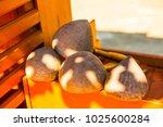 thai style dipper  thailand. | Shutterstock . vector #1025600284