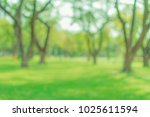 blurred abstact green tree... | Shutterstock . vector #1025611594
