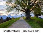 saint primoz church on a...   Shutterstock . vector #1025621434