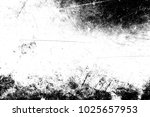 abstract background. monochrome ... | Shutterstock . vector #1025657953
