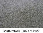 grunge wall texture | Shutterstock . vector #1025711920