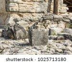 black spiny tailed iguana ...   Shutterstock . vector #1025713180