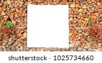 firewood for the winter  stacks ... | Shutterstock . vector #1025734660