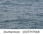 sea waves with sun light... | Shutterstock . vector #1025747068