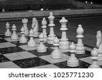chessmen against the background ...   Shutterstock . vector #1025771230
