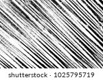 abstract background. monochrome ... | Shutterstock . vector #1025795719