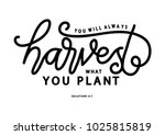 hand lettering you will always... | Shutterstock .eps vector #1025815819