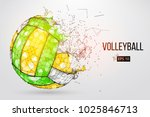 silhouette of a volleyball ball.... | Shutterstock .eps vector #1025846713