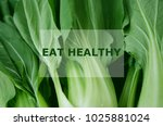 fresh green vegetable with text ... | Shutterstock . vector #1025881024
