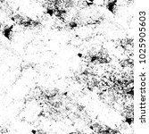 chaotic grunge ink particles.... | Shutterstock . vector #1025905603