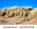 coastal erosion at the beach of ... | Shutterstock . vector #1025923918