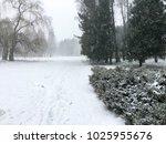 winter park. gloomy weather | Shutterstock . vector #1025955676