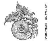 graphic prehistoric seashell... | Shutterstock .eps vector #1025967424
