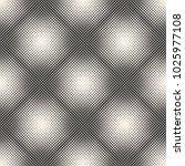 raster monochrome halftone... | Shutterstock . vector #1025977108
