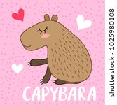 cute cartoon capybara vector... | Shutterstock .eps vector #1025980108
