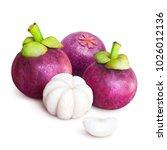 delicious tropical mangosteen...   Shutterstock . vector #1026012136