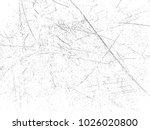 designed grunge background... | Shutterstock .eps vector #1026020800